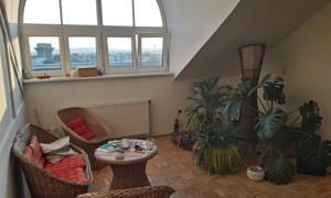 Single Wohnung Wien 22